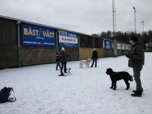 Hundkurs mitt i vintern:)